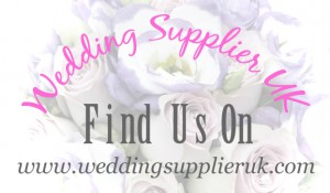 wedding supplier uk- swansea wedding dj