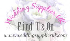 wedding supplier uk- swansea wedding dj